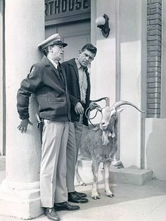 Andy and Barney and the dynamite goat
