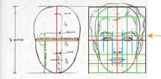 Image result for male face proportions