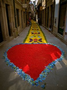 A carpet of flowers arranged overnight through the streets of Ponte de Lima, Portugal for, and to be destroyed by, the morning's Corpo de Deus procession.