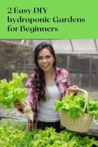 DIY hydroponic gardens for beginners Hydroponic Solution, Hydroponics System, Hydroponic Gardening, Organic Gardening, Container Gardening, Indoor Gardening, Vegetable Garden Tips, Herb Garden, Garden Works
