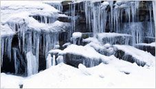 Frozen Formations