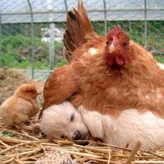 Moms come in all shapes and sizes!