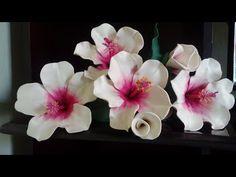 HIBISCO (no Frizador da Rosa Serenata) - YouTube