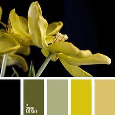 Farbpalette Nr. 246