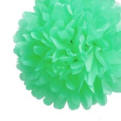 EZ-Fluff 8 Inch Arctic Spa Blue Tissue Paper Pom Poms Flowers Balls, Hanging Decorations PACK) Fluffy Wall Backdrop Decorations On Sale Now! Pom Pom Flowers, Tissue Pom Poms, Paper Pom Poms, Tissue Paper, Paper Flowers, Green Flowers, Green Party Decorations, Pom Pom Decorations, Bridal Shower Decorations