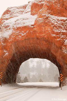 Scenic Highway 12, Dixie National Forest, Utah