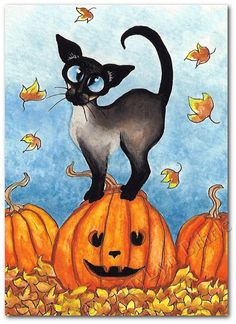 Created from one of my Original Paintings. ~ AmyLyn Bihrle ● Siamese Series #228 Title: Pumpkin Pose ● Sizes available- Use drop down menu for