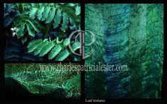 Leaf textures inspiration for textile designs