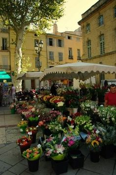 flower market France #www.frenchriviera.com