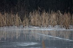 "Photo ""Ice-mirror"" by frantisekbalga"