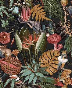Wonderland Jungle Wallpaper Black by Holden at Decorating Centre Online. Plum Wallpaper, Tier Wallpaper, Tropical Wallpaper, Botanical Wallpaper, Wallpaper Samples, Colorful Wallpaper, Botanical Prints, Quirky Wallpaper, Wallpaper Toilet