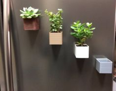 3D impreso macetas magnéticas por MoleDesigns en Etsy