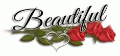 Beautiful Rose GIF - Beautiful Rose - Discover & Share GIFs Beautiful Roses, Beautiful Images, Create Your Own Gif, Create A Sticker, Rose Rise, Glitter Text, Perfect Gif, Famous Movies, All Video