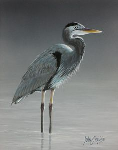 Heron Miniature Painting by John Crouse