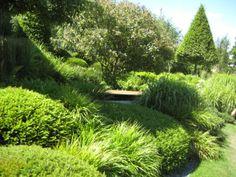 Irish Sky Garden designed by Diarmund Gavin (chelsea flower show 2011)
