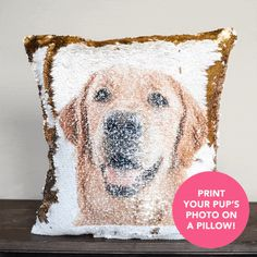 PupPillow: Print Your Pup's photo on pillow reversible SEQUINS! - Mermaid Pillow Co Bday Gifts For Him, Surprise Gifts For Him, Gifts For Pet Lovers, Cat Gifts, Cat Lovers, Sequin Cushion, Sequin Pillow, Mermaid Pillow, Best Valentine's Day Gifts
