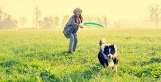 One of the most important pieces of advice you'll hear when choosing a dog breed is to find one that fits your lifestyle. Here are some breeds that are perfect for athletic and active people. Puppy Stages, Dog Stock Photo, Choosing A Dog, Therapy Dogs, Corpus Christi, German Shepherd Puppies, Working Dogs, Young And Beautiful, Dog Owners