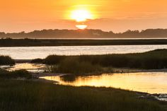 Share the Experience | assateaugue national seashore