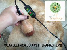 Moxa elétrica só a Vet Terapias tem!!!