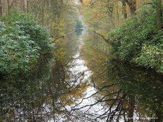 Canal on De Horsten estate, near Wassenaar, The Netherlands