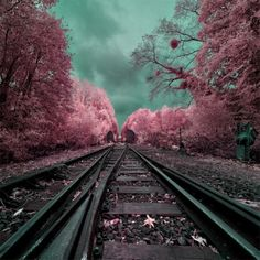 Fotografía infrarroja: Los surrealistas y maravillosos paisajes en infrarrojo de David Keochkerian