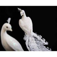 white peacock decor~ Dragon Lady, Female Dragon, Our Wedding, Wedding Ideas, Craft Packaging, White Peacock, Peacock Decor, White Feathers, Ice Queen