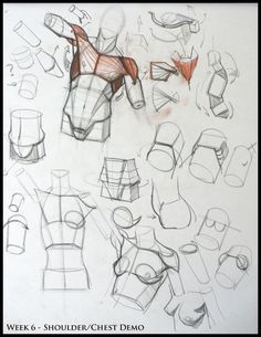 anatomi-model-karakalem-çizimleri-3f