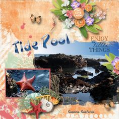 Tide-Pool   I used Heartstrings Scrap Art's  Enjoy the Moment Mega Collection.  The template is also part of the giant collection.  https://www.digitalscrapbookingstudio.com/digital-art/bundled-deals/enjoy-the-moment-mega-collection/