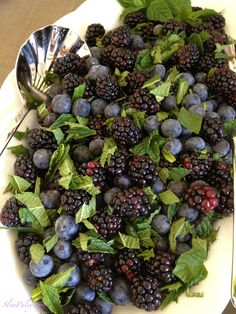Delish & Nutrish ; a beautiful luncheon salad.  Fresh blackberries, blueberries and torn mint leaves.