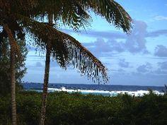 Availaible Thanksgiving, Ocean, tropical views, bikes, Hot tub, FUN!