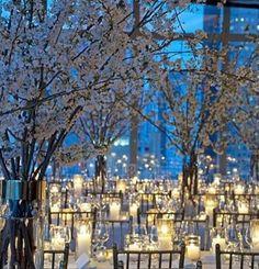 Decoração de festa de casamento com Árvores Francesas