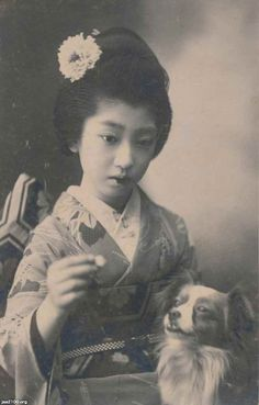 犬(大正3年)▷芸妓と洋犬(美人絵葉書)   ジャパンアーカイブズ - Japan Archives