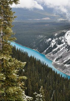 Lake Louise | by Marko Stavric. In Canada..One of the prettiest places I have ever seen!  It snowed while we were there.