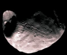 Phobos, one of the two moons of Mars, is a heavily cratered asteroid-like object. It is said to be doomed because it orbits so close to Mars that gravitational tidal forces are dragging it down. It will eventually be shattered by stress caused by these tidal forces. (Viking Orbiter image, 1977)