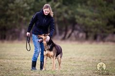 Are You Training Your German Shepherd Puppy? Here's The Most Common Training Mistakes People Make When They Take On The Training Role Themselves.