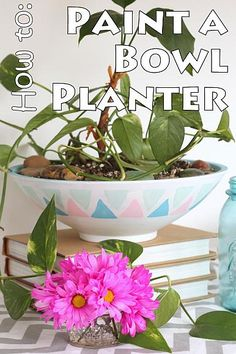 Chalky Finish Planter -- turn a thrift store bowl into a chic planter with just a little paint.  Click to see how to make your own.  This is stamped with a potato cut into a triangle.  So simple!