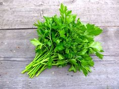 Cilantro How To Store, Col China, Types Of Lettuce, Most Nutrient Dense Foods, Mediterranean Spices, Turnip Greens, Basil Leaves, Garden Seeds, Natural Treatments