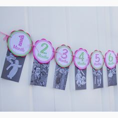 Monthly Photo Banner - 1 Month through 12 Months Banner - Monthly Banner - Baby Monthly Banner - First Year Banner - Pink and Green - Get The Party Started