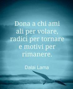 Dalai lama  - Aforismi  - Citazioni  - Frasi