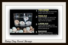 Rainy Day Food Storage: Preserve Eggs With Mineral Oil