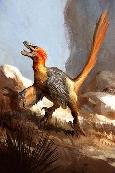 'Velociraptor package art by Jonathan Kuo'