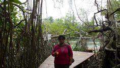 Start Point of Madu Ganga River Safari