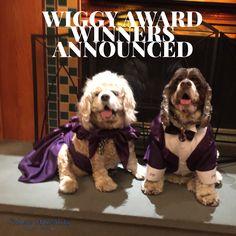Wiggy Awards 2016