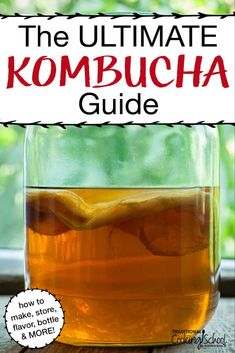 The ULTIMATE Kombucha Guide What is Kombucha? A sweet, sour and fizzy probiotic drink! Kombucha Flavors, Kombucha Scoby, Probiotic Drinks, Kombucha Benefits, Flavored Kombucha Recipe, Kombucha Fermentation, Kombucha Drink, Kombucha Brewing, Kombucha Cocktail