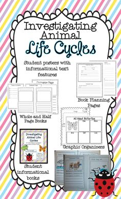 Investigating Animal Life Cycles informational writing.  Work with your students to write an informational book, poster, or paragraph about the animal life cycle of their choice! $