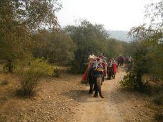 promenade dans la réserve de Nahargarh forest photo personnelle