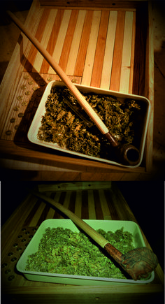 hotovo! Je čas na testování :-) How To Dry Basil, Herbs, Wood, Life, Madeira, Woodwind Instrument, Herb, Wood Planks, Trees