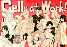 B Cell, Fujoshi, Me Me Me Anime, Steven Universe, Anime Characters, Manga Anime, Nerdy, Random Stuff, Feels