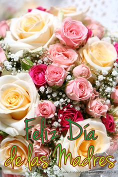 rooyklam - 0 results for holiday Happy Mothers Day Images, Happy Mother Day Quotes, Mothers Day Cards, Happy Birthday Harley, Love Flowers, Wedding Flowers, Happy Birthday Greetings Friends, Birthday Quotes For Her, Good Morning Images Hd