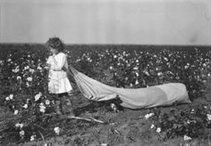 © LEWIS HINE - Cotton Picker, Oklahoma, 1916 + VIDEO here: http://www.bbc.co.uk/news/magazine-17673213